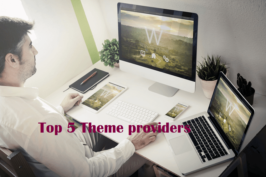 top theme providers